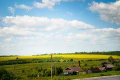 与村庄领域的农村俄国夏天风景 免版税库存照片