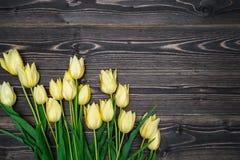 与束的春天背景郁金香开花,拷贝空间 免版税库存图片