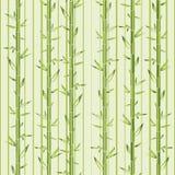 与条纹的绿色竹子 免版税库存照片