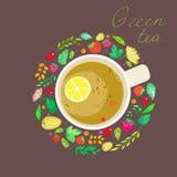 与杯子的图象的例证在莓果、叶子和分支的框架的绿茶 免版税图库摄影