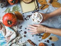 与杯子的秋天背景蛋白软糖、黄色槭树叶子和南瓜 妇女` s手拿着一个杯子 顶层 库存照片