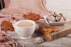 与杯子的秋天静物画可可粉和巧克力曲奇饼 库存照片