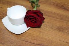 与杯子的红色玫瑰 库存图片