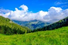与松的云彩的山风景 免版税图库摄影