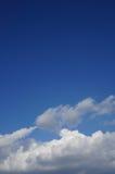 与松的云彩的蓝天 免版税库存照片