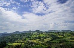与松的蓝天的谷 库存图片