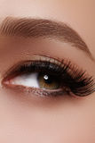 与极端长的睫毛的美丽的女性眼睛,黑划线员构成 完善的构成,长的鞭子 特写镜头时尚眼睛 库存图片
