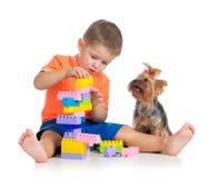 与构件玩具的孩子作用。 狗查看男孩。 免版税图库摄影