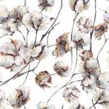 与枝杈和棉花的水彩无缝的样式开花 库存例证