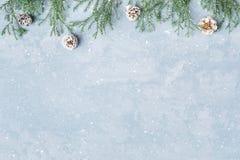 与枝杈和锥体的圣诞节和新年多雪的背景 库存照片