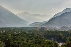 与枣椰子树前景的庄严山  免版税库存照片