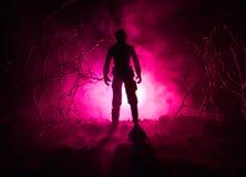 与枪的军事战士剪影 战争概念 与在战争雾天空背景,世界大战Soldie的军事剪影场面战斗 库存照片