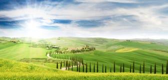 与柏树的田园诗托斯卡纳风景 顶面吸引力在意大利 著名旅行目的地 库存图片