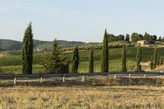 与柏油路的托斯卡纳农村风景 免版税库存图片