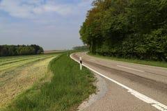 与柏油路的春天风景 库存图片