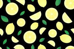 与柑橘水果的图象的样式 库存例证