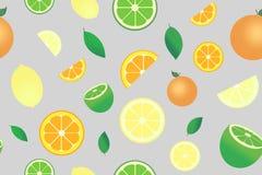 与柑橘水果的图象的样式 皇族释放例证