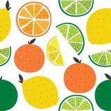 与柑橘的无缝的背景 免版税库存照片