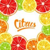与柑橘水果切片的框架 柠檬石灰葡萄柚和桔子的混合 免版税库存图片