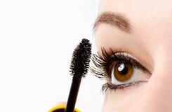 与染睫毛油的妇女眼睛 库存照片