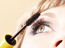 与染睫毛油眼睛的少妇构成 免版税库存图片