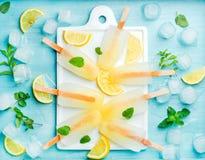 与柠檬切片、新鲜薄荷叶子和冰块的柠檬水冰棍儿在白陶瓷委员会 库存图片