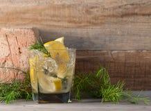 与柠檬切片的酒精鸡尾酒和杜松分支 库存图片