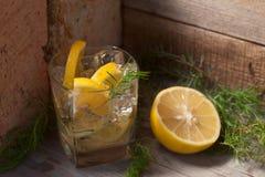 与柠檬切片的酒精鸡尾酒和杜松分支 免版税库存照片