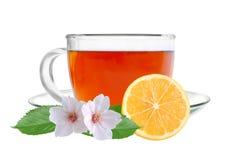 与柠檬和茉莉花花的杯子茶 库存图片