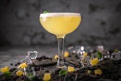 与柠檬柑橘和姜的酒精或非酒精鸡尾酒用加的利口酒、伏特加酒、香槟或者马蒂尼鸡尾酒 冷饮 图库摄影