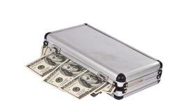 与查出的美元的案件 免版税库存照片