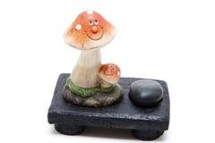 与查找的蘑菇 图库摄影