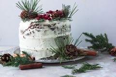 与柿子的自创蛋糕装饰用结霜乳脂干酪和洒用在新年装饰的巧克力 库存图片