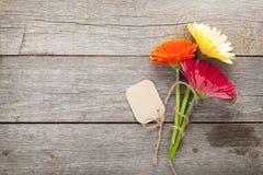 与标记的三朵五颜六色的大丁草花 免版税库存照片