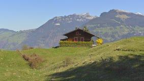 与树、山和湖的Aeschiried风景 免版税图库摄影