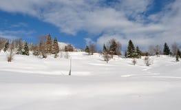 与树、雪、云彩和蓝天的冬天风景 库存图片