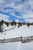 与树、雪、云彩和蓝天的冬天风景 免版税库存图片