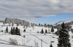 与树、雪、云彩和蓝天的冬天风景 库存照片