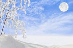 与树冰的冬天风景在分支和月亮 图库摄影