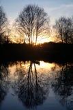 与树剪影的自然风景在一个镇静湖附近的在日落的秋天晚上 免版税库存图片