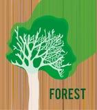 与树卡片-例证盖子的或卡片,图表的木纹理 免版税库存图片