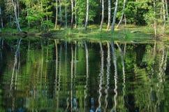 与树反射的夏天风景在湖 图库摄影