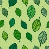与树叶子的无缝的样式 图库摄影