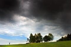 与树和云彩的领域 免版税库存图片