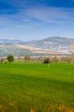 与树和山的农村风景 免版税库存照片
