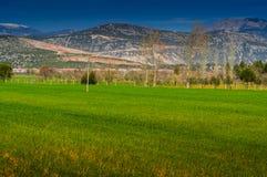 与树和山的农村风景 免版税库存图片