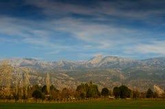 与树和山的日落风景 库存照片