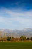 与树和山的日落风景 免版税库存图片
