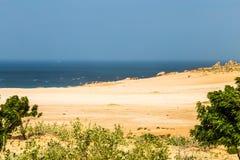 与树和岩石的离开的海滩 免版税库存图片