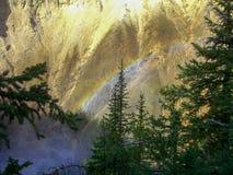 与树和彩虹的一个岩石 库存图片